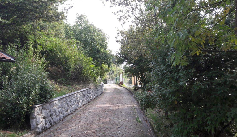 vialetto ingresso